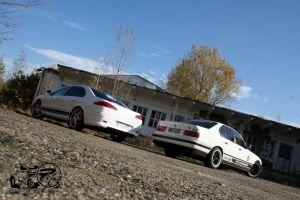 448 BMW & Peugeot