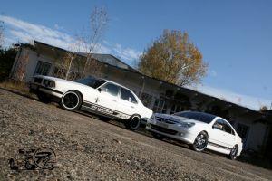 446 BMW & Peugeot