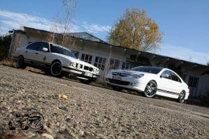 445 BMW & Peugeot